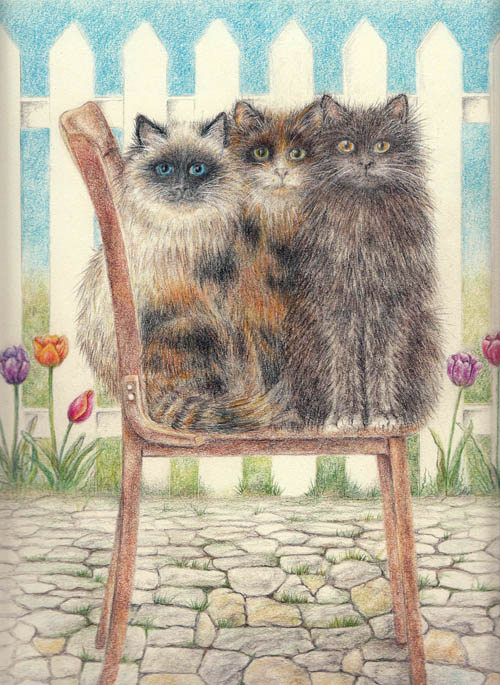 Cats on a Chair