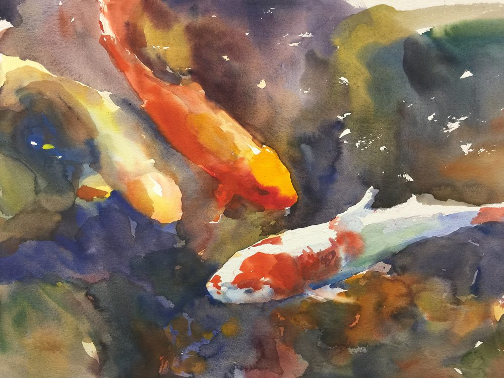 Shauna-Shane-watercolor-Koi