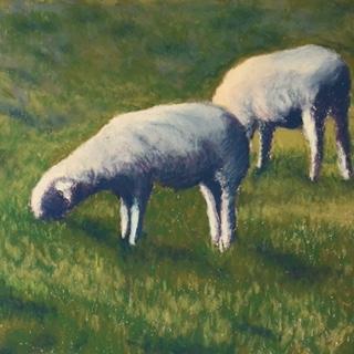 Lambs at Horse Barn Hill, pastel
