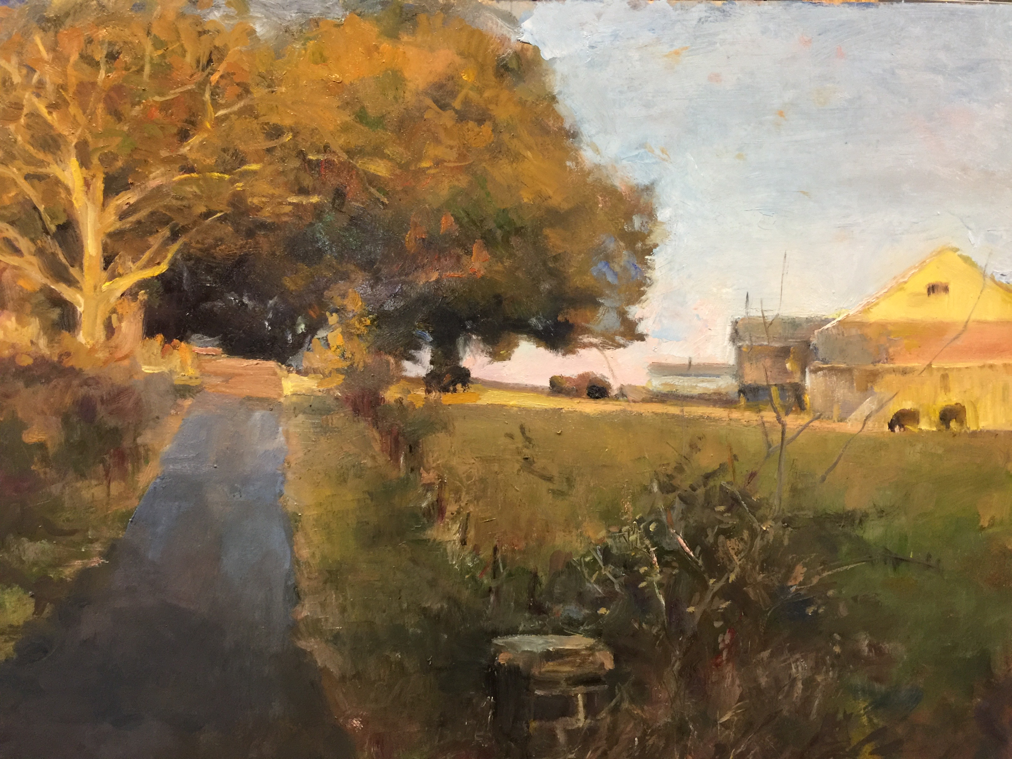 Shauna Shane_farm road_oil
