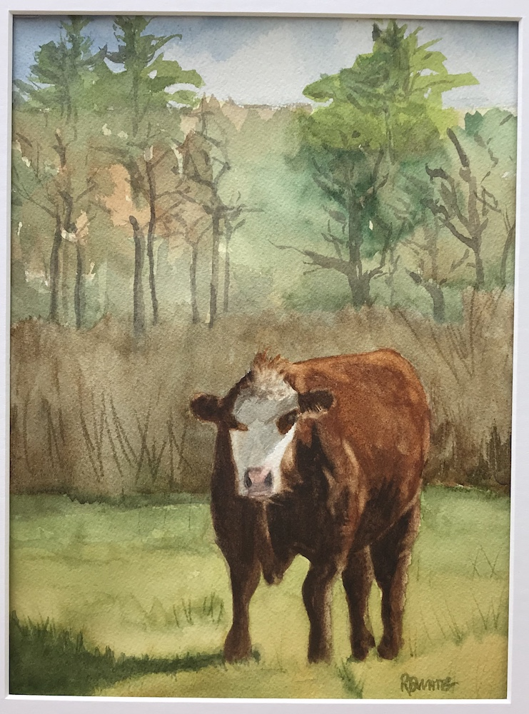 Ashford Steer, watercolor