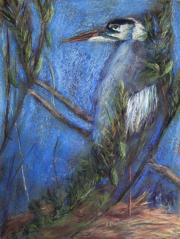 Blue Heron on Waite, pastel