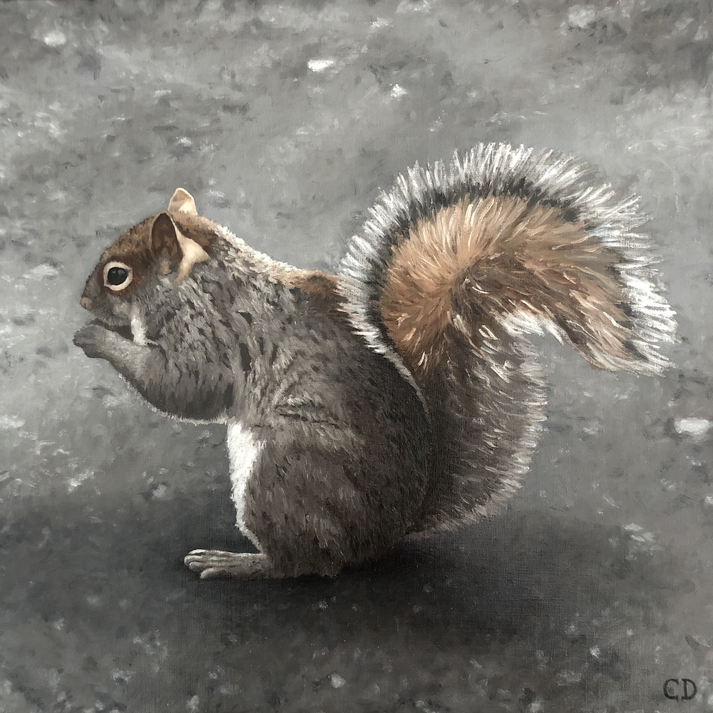 NY Squirrel, oil