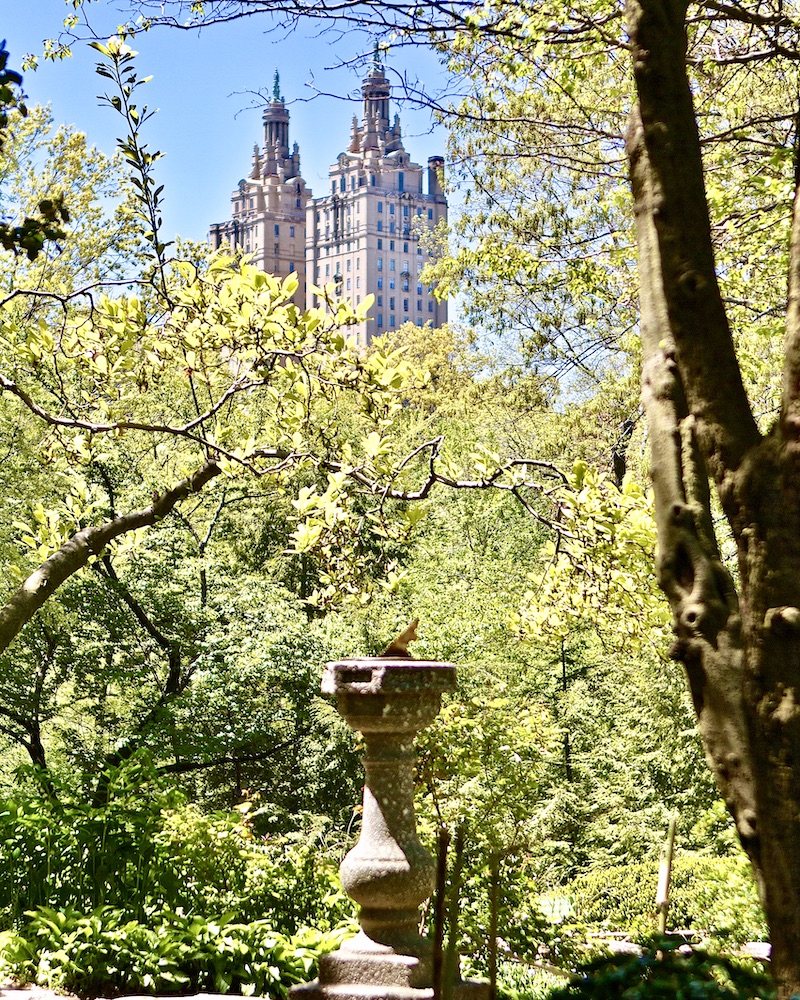 Spring in Central Park, digital photography