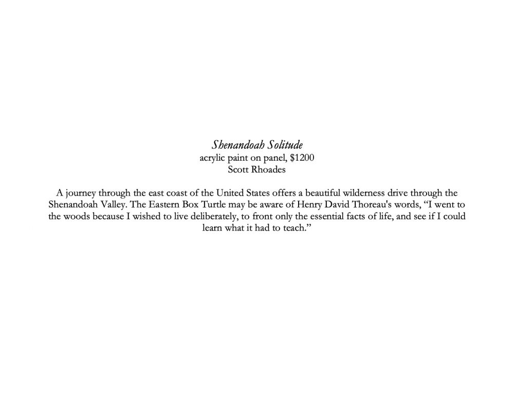Shanandoah Solitude description