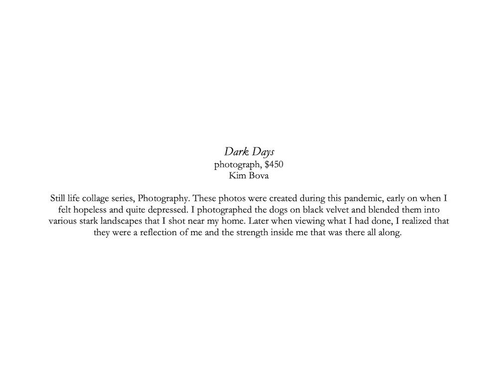 Dark Days description corrected